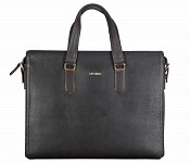 Portfolio / Laptop Bag - F62